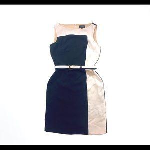TAHARI Black White Sleeveless Knee Length Dress
